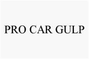 PRO CAR GULP