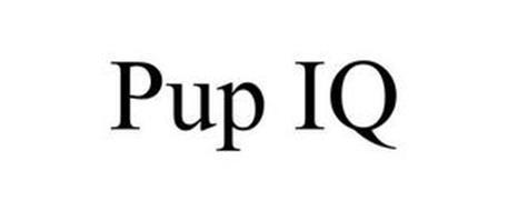 PUP IQ