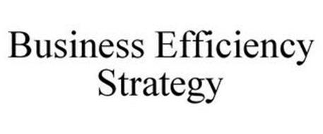 BUSINESS EFFICIENCY STRATEGY