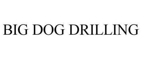 Big Dog Drilling Owner