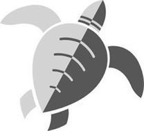 Adamo Island Saddles, LLC