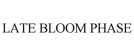 LATE BLOOM PHASE