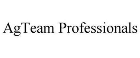 AGTEAM PROFESSIONALS