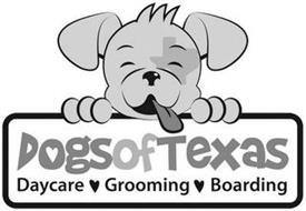DOGSOFTEXAS DAYCARE GROOMING BOARDING