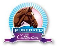 PUREBRED COLLECTION