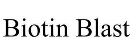 BIOTIN BLAST