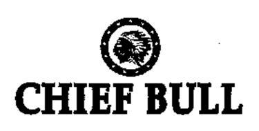 CHIEF BULL