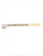 AATA AMAZING ATHLETES TRAINING ACADEMY