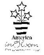 AMERICA IN BLOOM PLANTING PRIDE IN OUR COMMUNITIES!