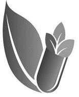 AMERICA MEDIC & SCIENCE, LLC