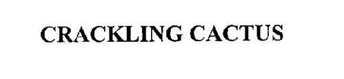 CRACKLING CACTUS