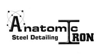 ANATOMIC IRON STEEL DETAILING