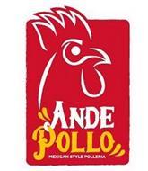 ANDE POLLO MEXICAN STYLE POLLERIA