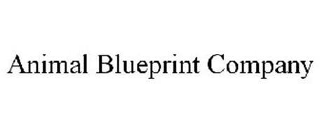 Animal blueprint company trademark of animal blueprint company inc animal blueprint company trademark information malvernweather Choice Image