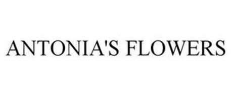 ANTONIA'S FLOWERS