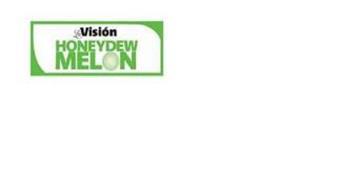 LA VISIÓN HONEYDEW MELON