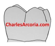 CHARLESARCORIA.COM