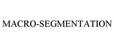 MACRO-SEGMENTATION