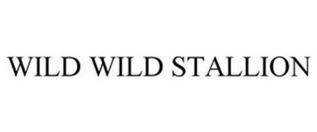 WILD WILD STALLION