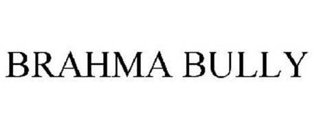 BRAHMA BULLY