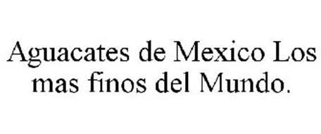 AGUACATES DE MEXICO LOS MAS FINOS DEL MUNDO.