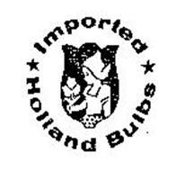 IMPORTED HOLLAND BULBS