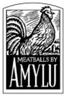 MEATBALLS BY AMYLU