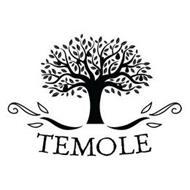 TEMOLE