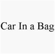 CAR IN A BAG