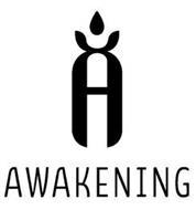 A AWAKENING
