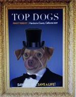 TOP DOGS PINOT VERDOT | MENDOCINO COUNTY, CALIFORNIA 2009 SAVOR A SIP...SAVE A LIFE!