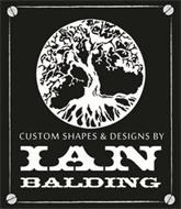 CUSTOM SHAPES & DESIGNS BY IAN BALDING