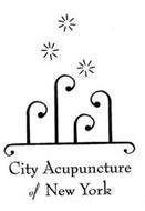 CITY ACUPUNCTURE OF NEW YORK