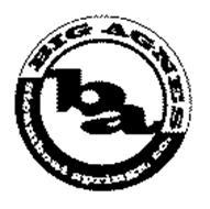 BA BIG AGNES STEAMBOAT SPRINGS, CO.