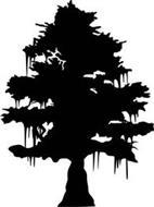 Big Cypress Distillery, LLC