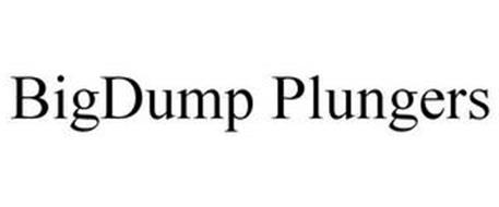 BIGDUMP PLUNGERS