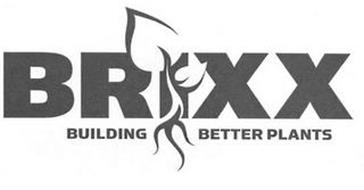 BRIXX BUILDING BETTER PLANTS