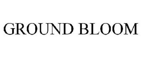 GROUND BLOOM