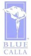 BLUE CALLA