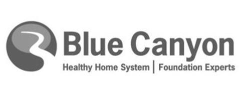 Blue Canyon Healthy Home System Foundation Experts