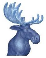 BLUE MOOSE OF BOULDER, LLC