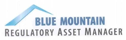 BLUE MOUNTAIN REGULATORY ASSET MANAGER TM