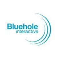 BLUEHOLE INTERACTIVE
