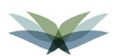 BluHawk Holdings, Inc.