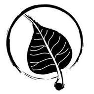 Bodhi Leaf Trading Co.
