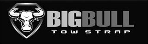BIGBULL TOW STRAP