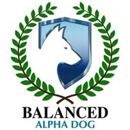 BALANCED ALPHA DOG