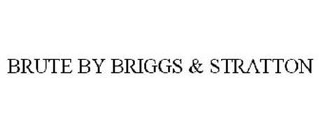 BRUTE BY BRIGGS & STRATTON