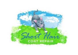 SHORT HAIR COAT REPAIR