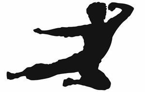 Bruce Lee Enterprises, LLC